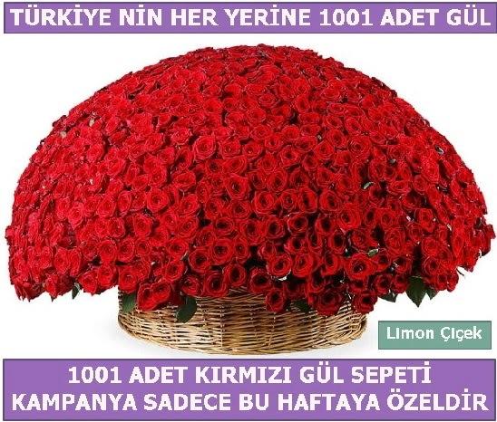 1001 Adet kırmızı gül Bu haftaya özel  Ankara yenimahalle İnternetten çiçek siparişi