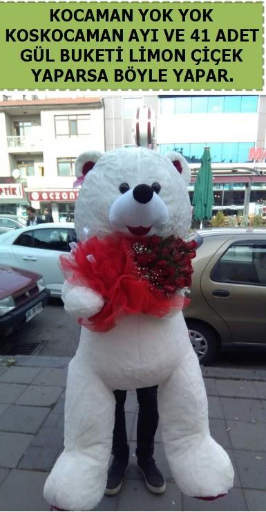 Koskocaman beyaz ayı ve 25 adet gül  Ankara lalegül çiçek siparişi sitesi