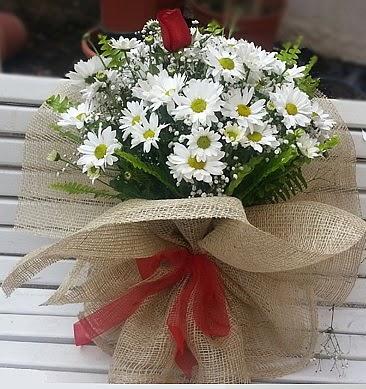 Papatya 1 adet kırmızı gül buketi  Ankara macunköy çiçekçiler