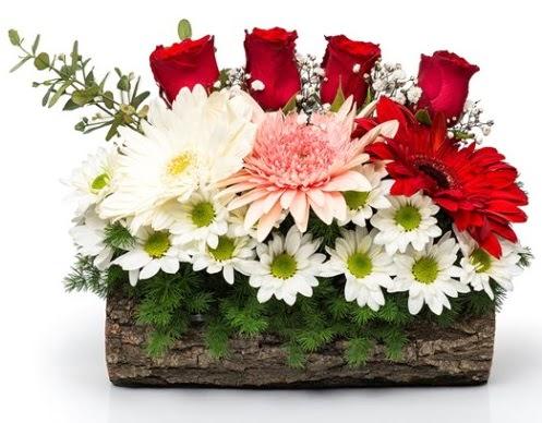 Doğal kütükte 4 gül ve kır çiçeği  Ankara lalegül çiçek siparişi sitesi
