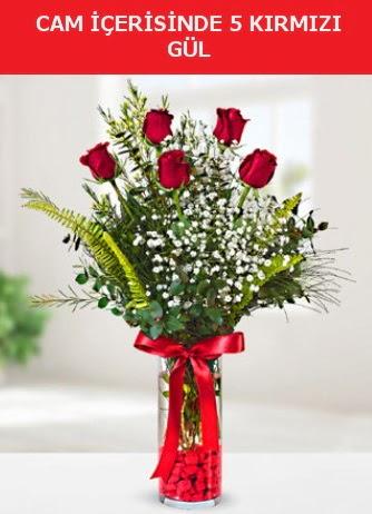 Cam içerisinde 5 adet kırmızı gül  Ankara lalegül çiçek siparişi sitesi