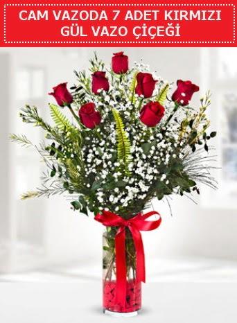 Cam vazoda 7 adet kırmızı gül çiçeği  Ankara ostim çiçek gönderme sitemiz güvenlidir