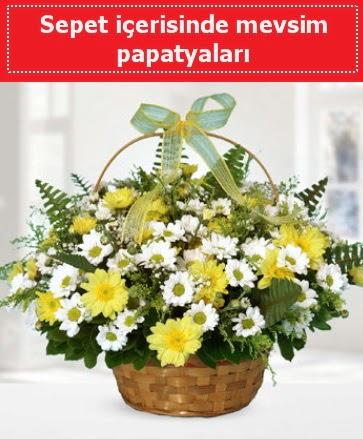 Sepet içerisinde mevsim papatyaları  Ankara demetevler ucuz çiçek gönder
