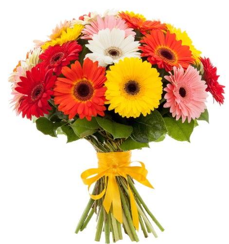Gerbera demeti buketi  Ankara gimat çiçek satışı