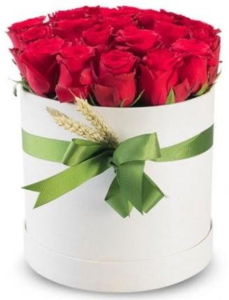 Özel kutuda 25 adet kırmızı gül çiçeği  Ankara gimat çiçek satışı
