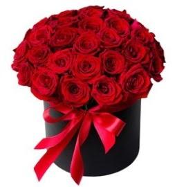25 adet kırmızı gül kız isteme çiçeği  Ankara karacakaya internetten çiçek satışı