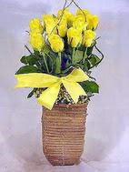 Ankara yurtiçi ve yurtdışı çiçek siparişi  sicak ates çiçek sepet modeli