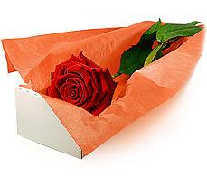 Ankara hacettepe çiçek mağazası , çiçekçi adresleri  Kutuda tek gül özel kisilere